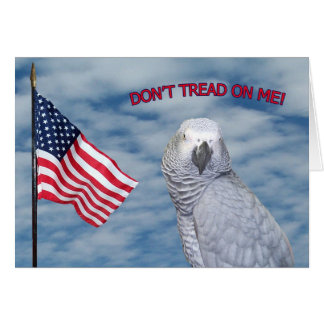 African Grey Don't Tread On Me Small Note Card