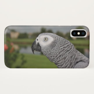 African Grey Lakeside iPhone X Case