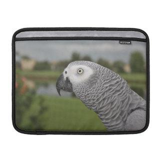 African Grey Lakeside MacBook Sleeves