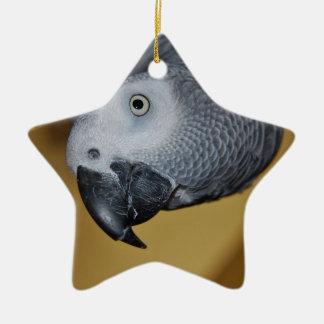 African Grey Parrot Ceramic Star Ornament