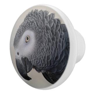 African Grey Parrot Dresser Knobs