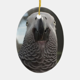 African Grey Parrot Face Close-Up Ceramic Oval Ornament