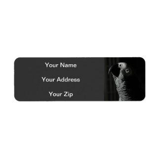 African Grey Parrot Return Address Labels
