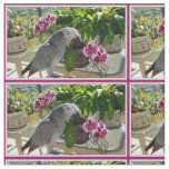 African Grey Parrot with Orchids Fabric