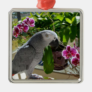 African Grey Parrot with Orchids Christmas Ornament