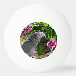 African Grey Parrot with Orchids Ping-Pong Ball