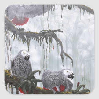 African Grey Parrots flying free Square Sticker