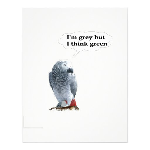 African Grey Thinks Green Personalized Letterhead