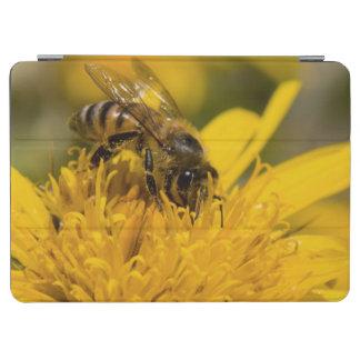 African Honey Bee With Pollen Sacs Feeding iPad Air Cover