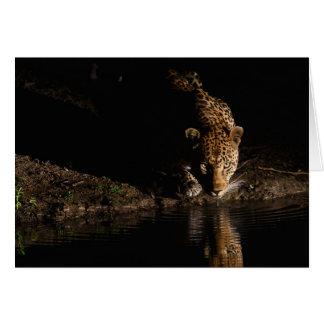 African Leopard Card