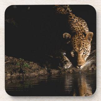 African Leopard Coaster