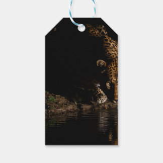 African Leopard Gift Tags