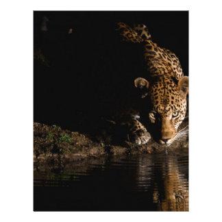 African Leopard Letterhead Template