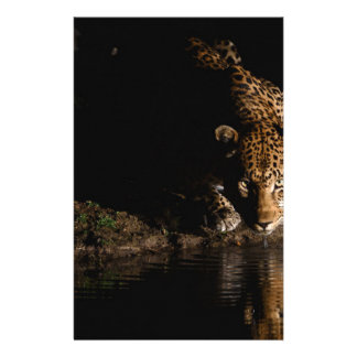 African Leopard Stationery