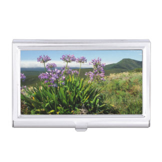 African Lily (Agapanthus praecox), Mossel Bay Case For Business Cards