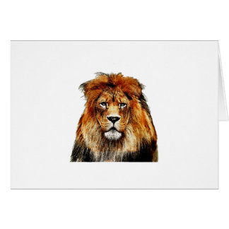 African Lion Card