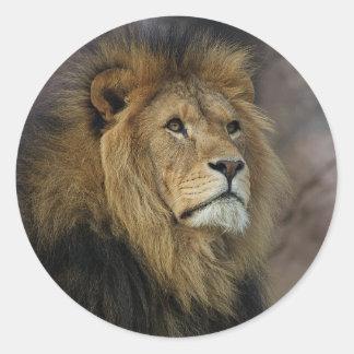 African Lion Classic Round Sticker