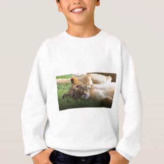 African Lion Cub Sweatshirt