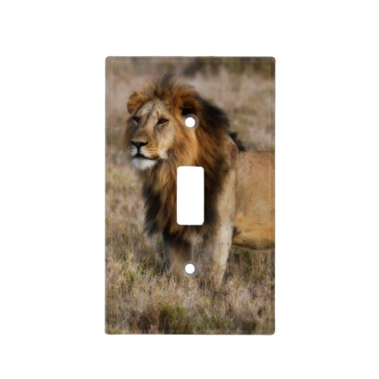 African Lion Light Switch Plate