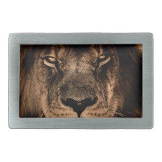 african lion mane close eyes belt buckle