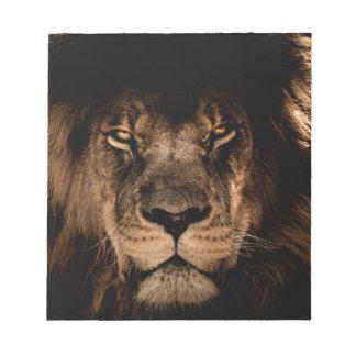 african lion mane close eyes notepad
