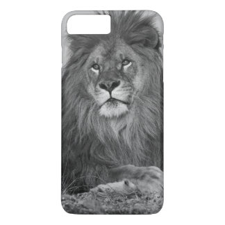 African Lion resting on rock cliff iPhone 7 Plus Case