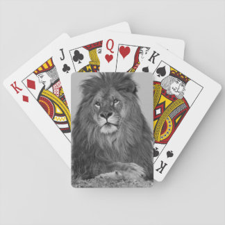 African Lion resting on rock cliff Playing Cards