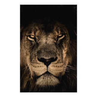 African Lion Stationery
