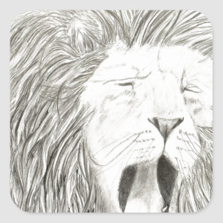 African Lion; Wildlife Artwork Collection Square Sticker