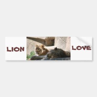 African Lions Bumper Sticker