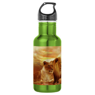 African lions - safari - wildlife 532 ml water bottle