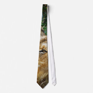 African male lion designer ties