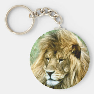 African male Lion Keychain