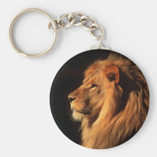 African Male Lion Photographed by Steven Holt Basic Round Button Keychain