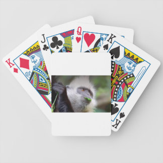 African Monkey Bicycle Playing Cards