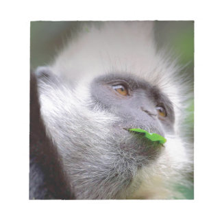 African Monkey Notepad