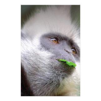 African Monkey Stationery