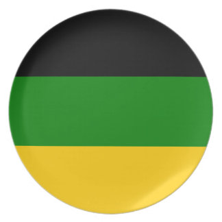African National Congress ANC South Africa Plate