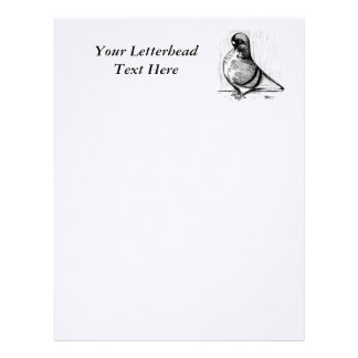 African Owl Pigeon 1978 Customized Letterhead
