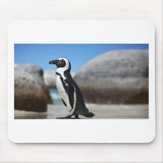 African Penguin Mouse Pad