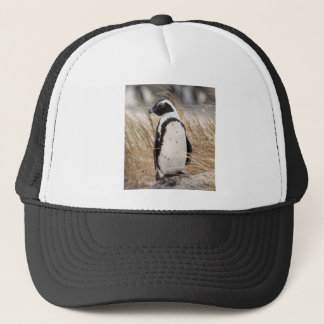 African Penguin On The Beach Trucker Hat