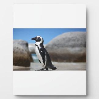 African Penguin Plaque