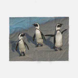 African Penguins | Spheniscus Demersus Fleece Blanket