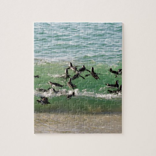 African penguins swimming at beach jigsaw puzzle
