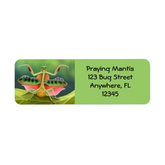 African Praying Mantis Label Return Address Label