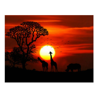 African Safari Sunset Animal Silhouettes Postcard