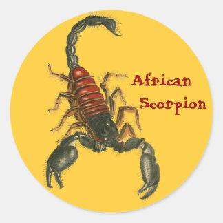 African Scorpion Sticker