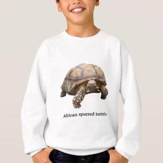 African spurred tortoise sweatshirt