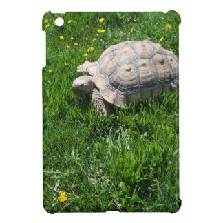 African sulcata tortoise iPad mini cover