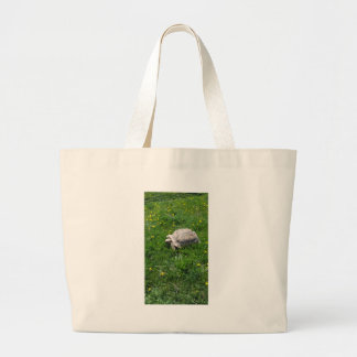 African sulcata tortoise large tote bag